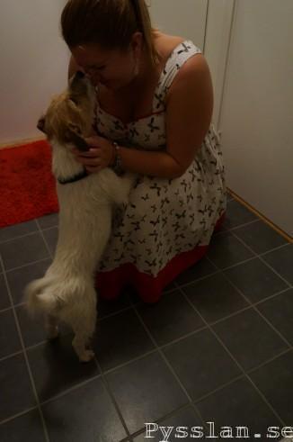 Gammalt 50tals mönster för nytt liv, rödvit klänning med rosetter fotokrash av hund pysslan blogg